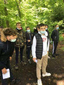 Les 4èmes du lycée Saint-Clair découvre la forêt du Gâvre
